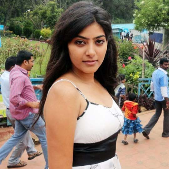 Rajshri Rani Images